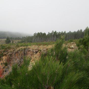 Couto mineiro do Beça